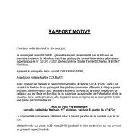 190204 RAPPORT MOTIVE.pdf