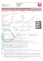 EVDW19_001_Elekkeuring.pdf