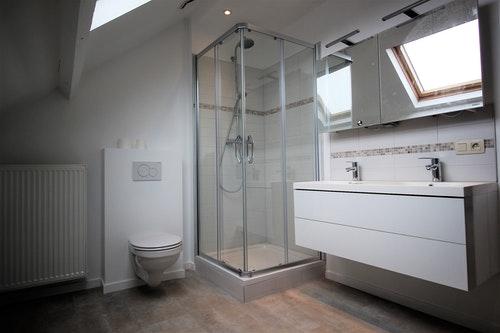 Salle de bain + douche + wc